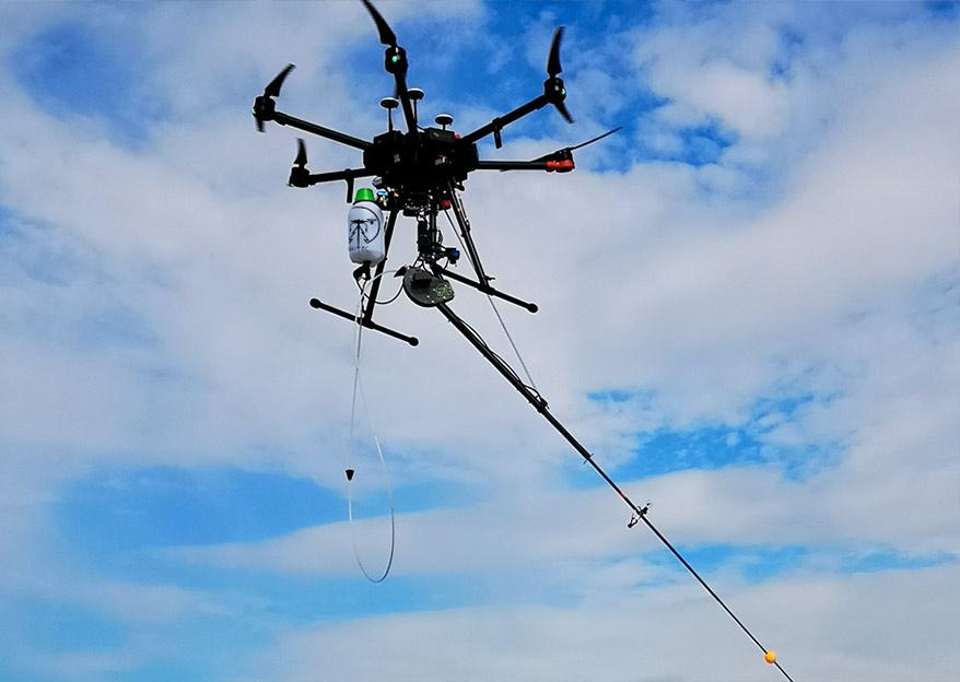 Drone FitoVelu che esegue il trattamento della vespa di velutina (asiatico)
